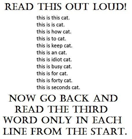 Read this out loud...