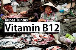 Fungsi Vitamin B12 Yang Sangat Penting dan Wajib Kamu Ketahui