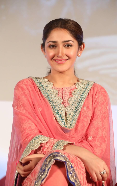 Indian Girl Sayyeshaa Saigal Hot In Pinks Punjabi Dress