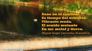 blogdepoesia-poesia-miguel-angel-cervantes-sanar