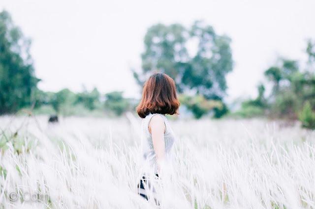 Top 99 Bài Thơ & Những Câu Thơ Ngắn Hay Về Hoa Cỏ May Thật Đẹp