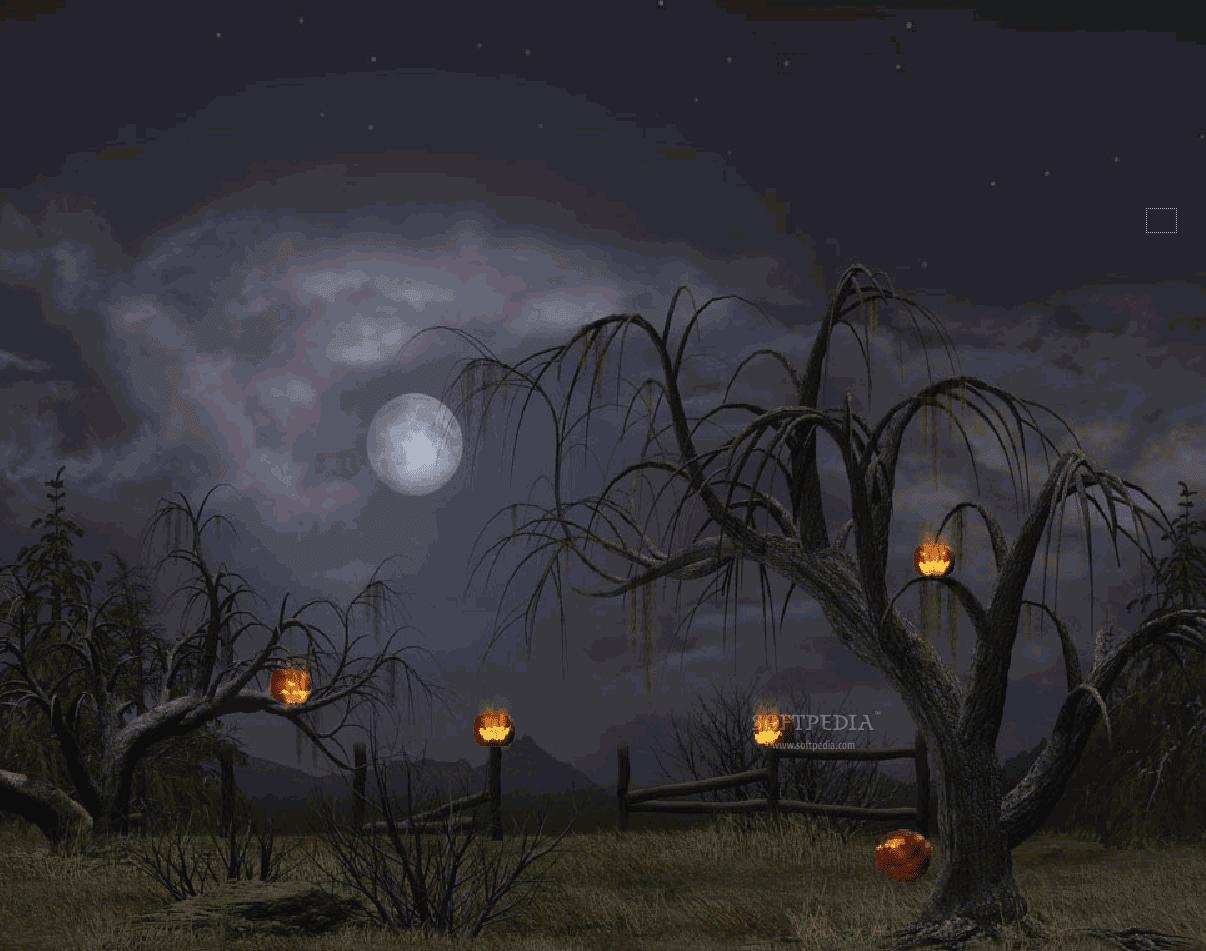 Wallpapers HD: Halloween Wallpapers