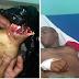 COSAS DEL DEMONIO!! Haitiano le corta la mano a joven en los Cacaos Bajo Yuna