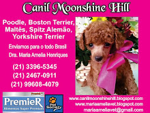 CANIL MOONSHINE HILL