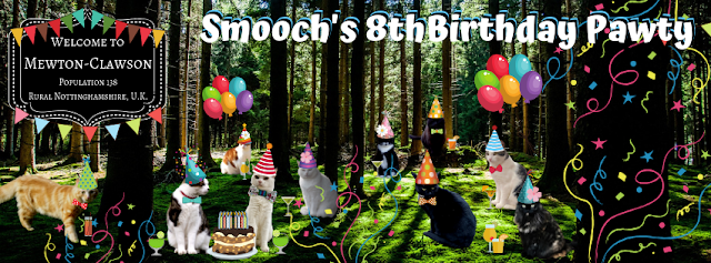 Smooch Birthday Mewton-Clawson Cats The B Team Pawty ©BionicBasil®