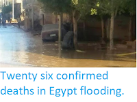 http://sciencythoughts.blogspot.co.uk/2016/10/twenty-six-confirmed-deaths-in-egypt.html