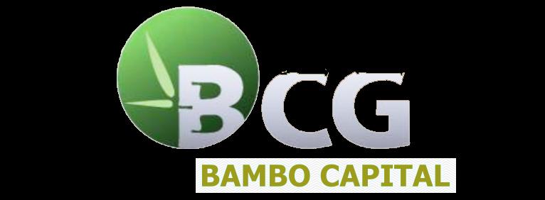 Chủ đầu tư Bambo Capital