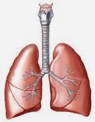 Obat Sesak Nafas atau Dyspnea