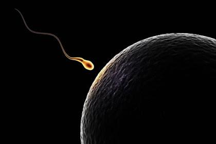 Fakta Air Mani Tidak Hanya Menyimpan Sperma Saja namun Juga Puluhan Virus Yang Siap Menular