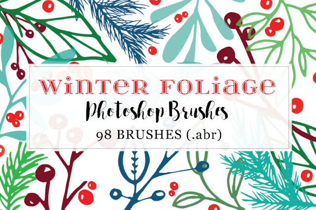 Creative Market Winter Branches Photoshop Brushes