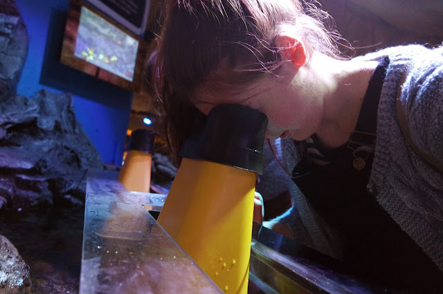 lyd looking into a yellow magnifying device that looks into a fish tank
