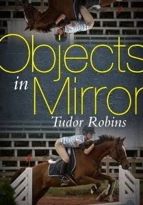 https://www.goodreads.com/book/show/16033542-objects-in-mirror