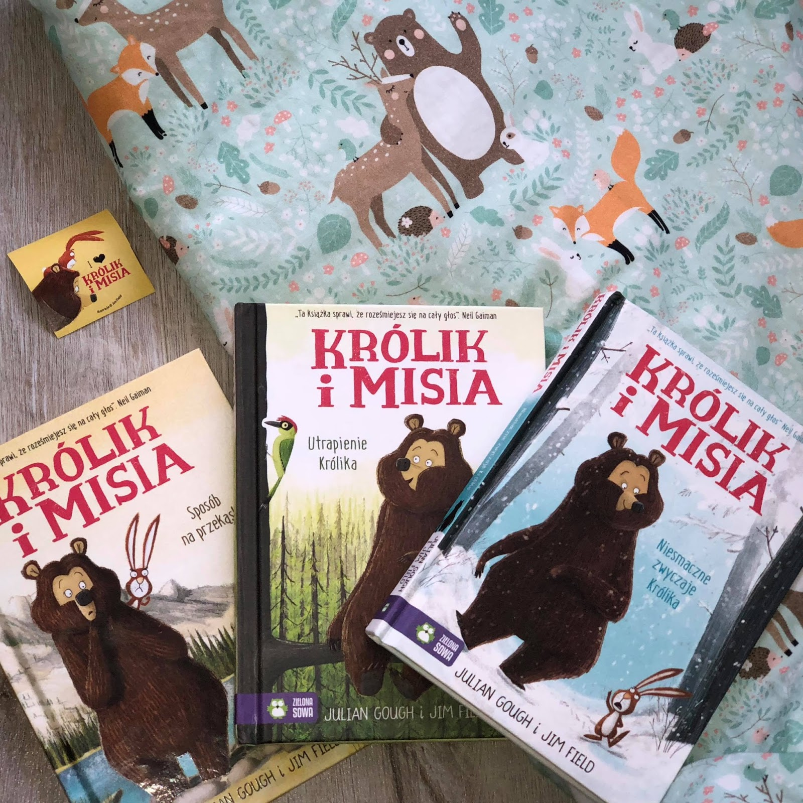 """""""Królik i Misia"""" - przezabawna seria książek dla dzieci- Wydawnictwo Zielona Sowa"""