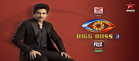 Bigg Boss Telugu - Season 3 Voting