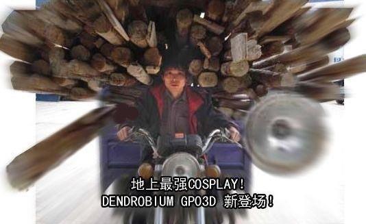 gp03d cosplay dendrobium