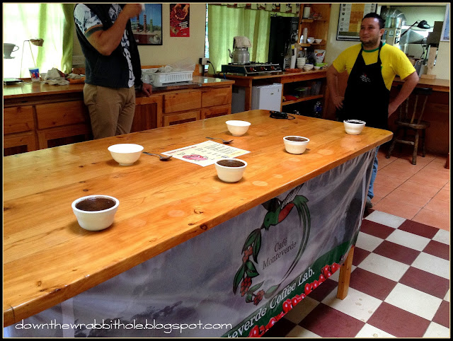 monteverde coffee lab, cupping coffee