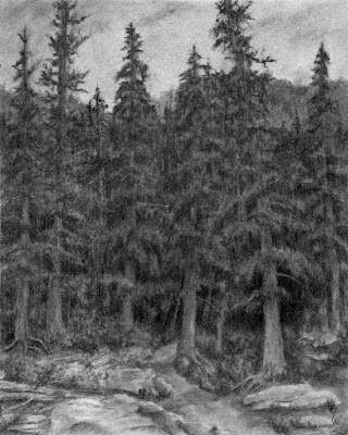 art drawing charcoal mountain forest evergreen tree nature