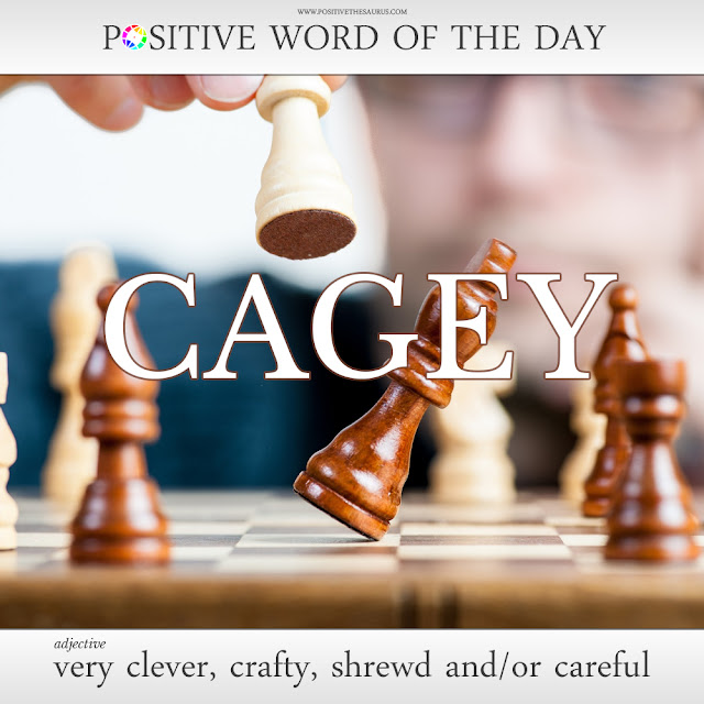 definition cagey positive words of the day