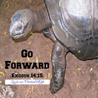 Go forward Exodus 14:15