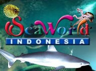 http://rekrutindo.blogspot.com/2012/05/seaworld-indonesia-careers-may-2012-for.html