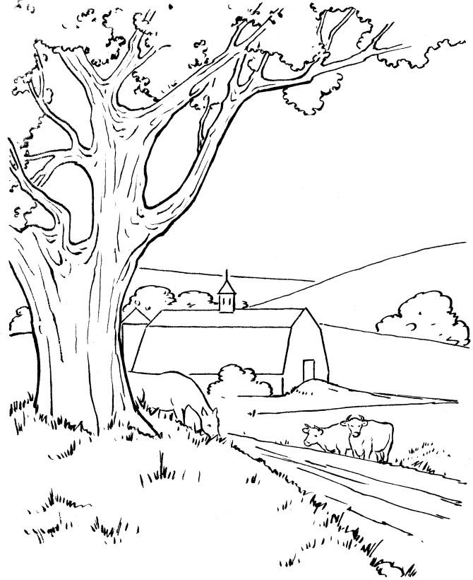 Pemandangan Untuk Mewarnai : pemandangan, untuk, mewarnai, Gambar, Mewarnai, Pemandangan, Pegunungan, Pedesaan, Gambarcoloring