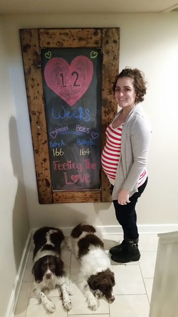 12 weeks, valentines day, pregnancy, twins, frozen embryo transfer, diy, chalkboard, chalk board, limes, babies, baby, breast cancer survivor, li fruameni, lfs, li fruameni syndrome