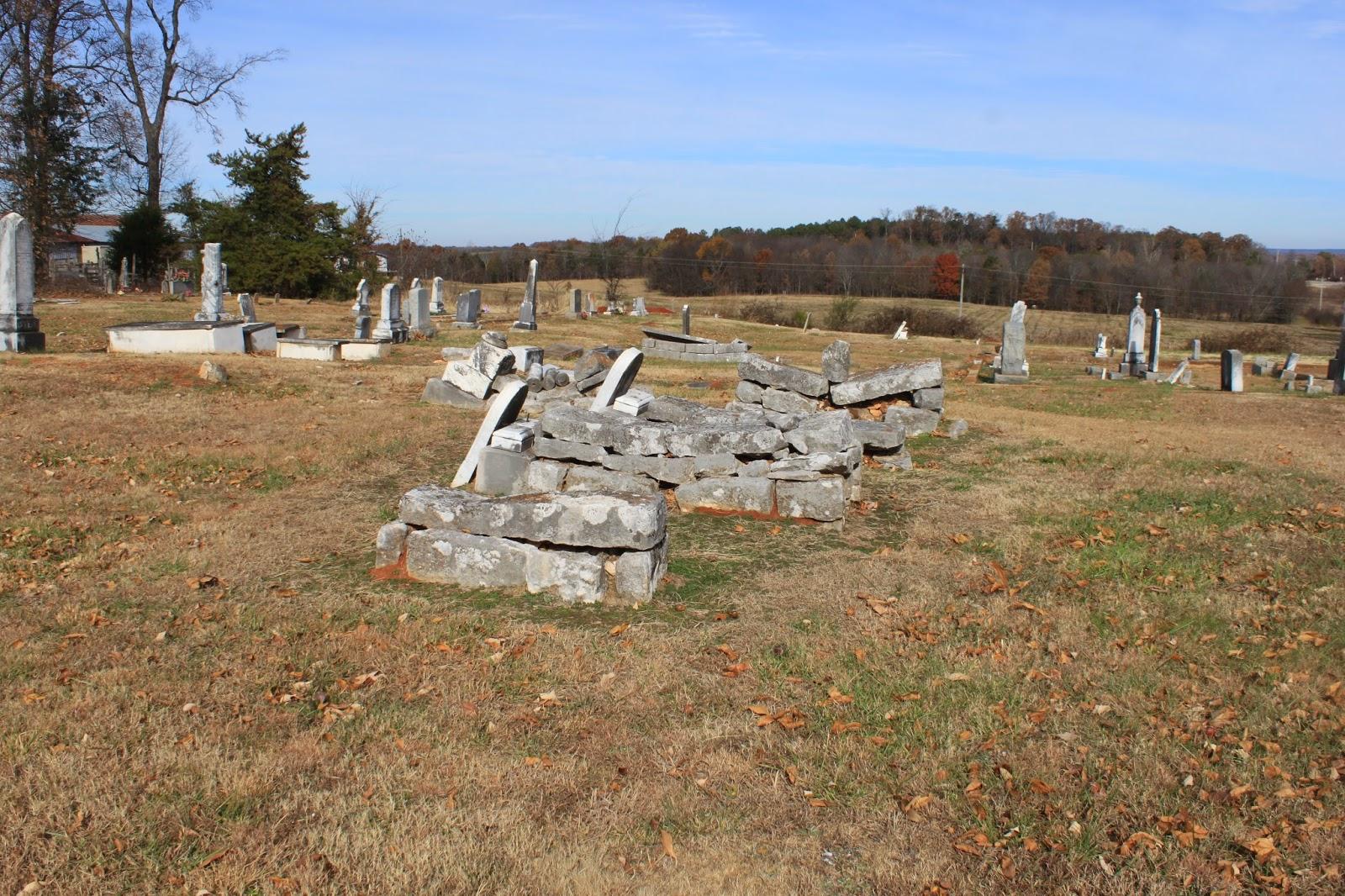 Graveyard Rabbit of Northwest Georgia