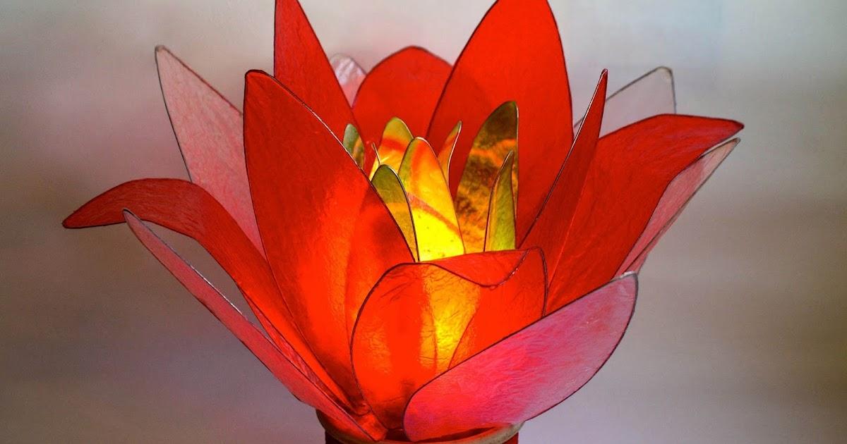 Lampada Fiore Tulipano : Fiore di luce lampade artistiche