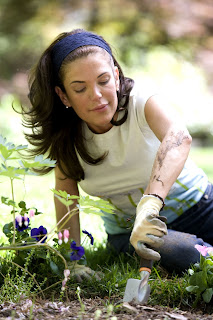 Pesticida casero y ecológico