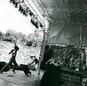Rage Against the Machine - New Millennium Homes