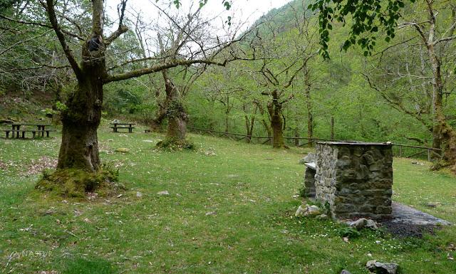 Área Recreativa de La Pesanca - Piloña - Asturias