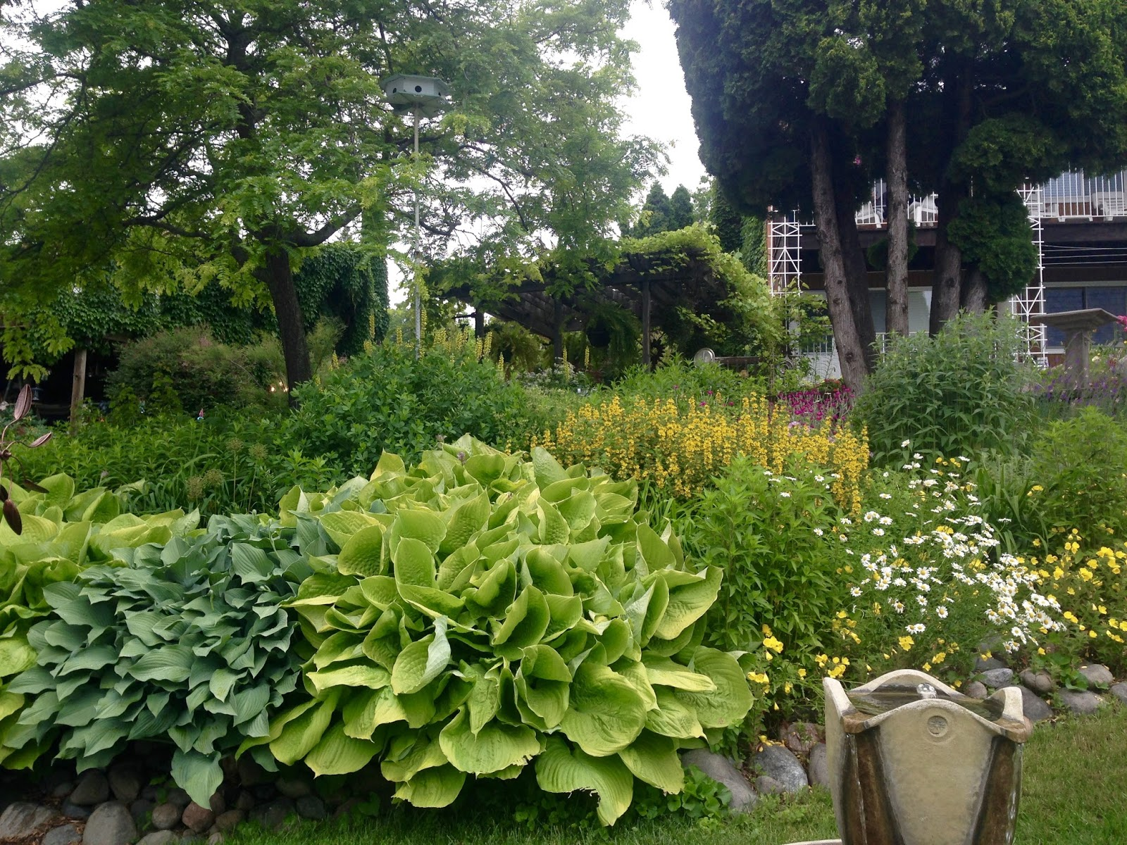 Amy 39 S Creative Pursuits The Flowers And Gardens Of Bayfield