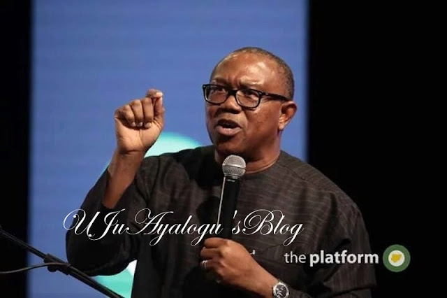South East And South South Have The Fastest Growing Cities In Nigeria – Peter Obi