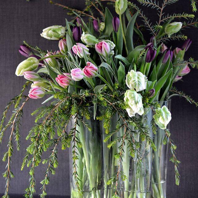 Vi feirer tulipanene dag - Tulipaner og litt grønt