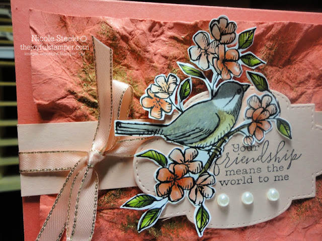 CASEing Stampin' Up!'s Sale-A-Bration catalog with Free As A Bird and Bird Ballad products | crumpled paper technique