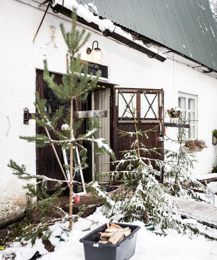 strömforsin ruukin joulu 2017 ruukki ruotsinpyhtää joulukuusi wanha navetta #vistiloviisa #wanhattalot