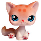 Littlest Pet Shop 3-pack Scenery Cat Shorthair (#224) Pet