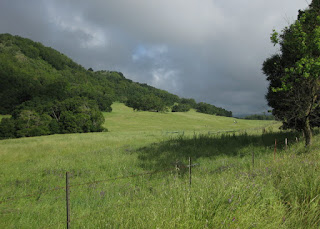 Gray clouds over a sunny field near Gilroy, California