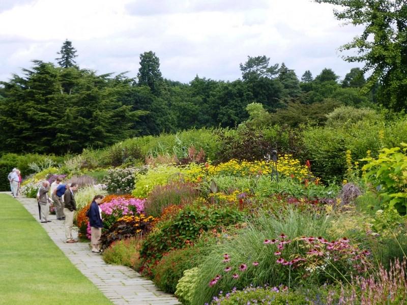 plantas vivaces, anuales y trepadoras que florecen desde la primavera hasta finales de otoño