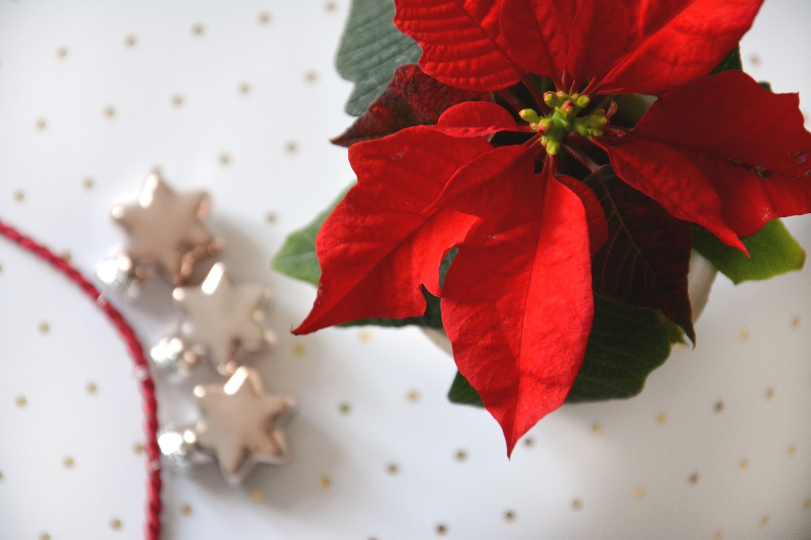 Gold, Red, & White Christmas Suppliances