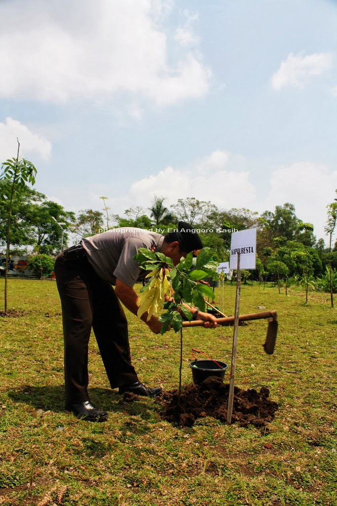 Kapolresta Tasikmalaya Melakukan Penanaman Pohon