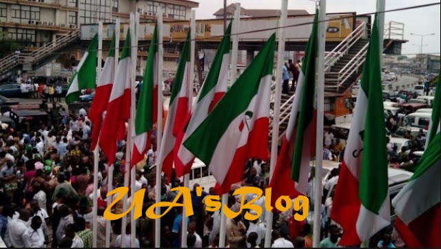 2019: PDP Resolves To Change Name After String Of Governorship Losses