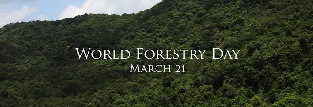 21 March International Day Of Forests Card