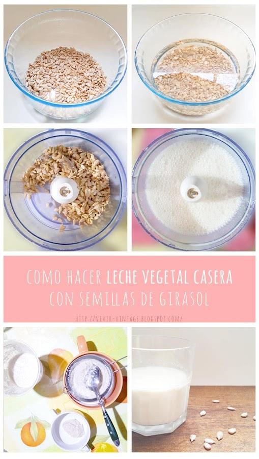receta leche semillas girasol foto-tutorial