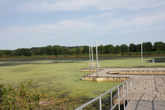 Viewing dock at Nahant Marsh
