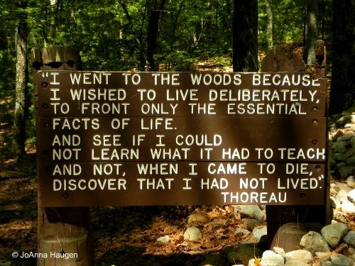 Thoreau walden suck the marrow out of life