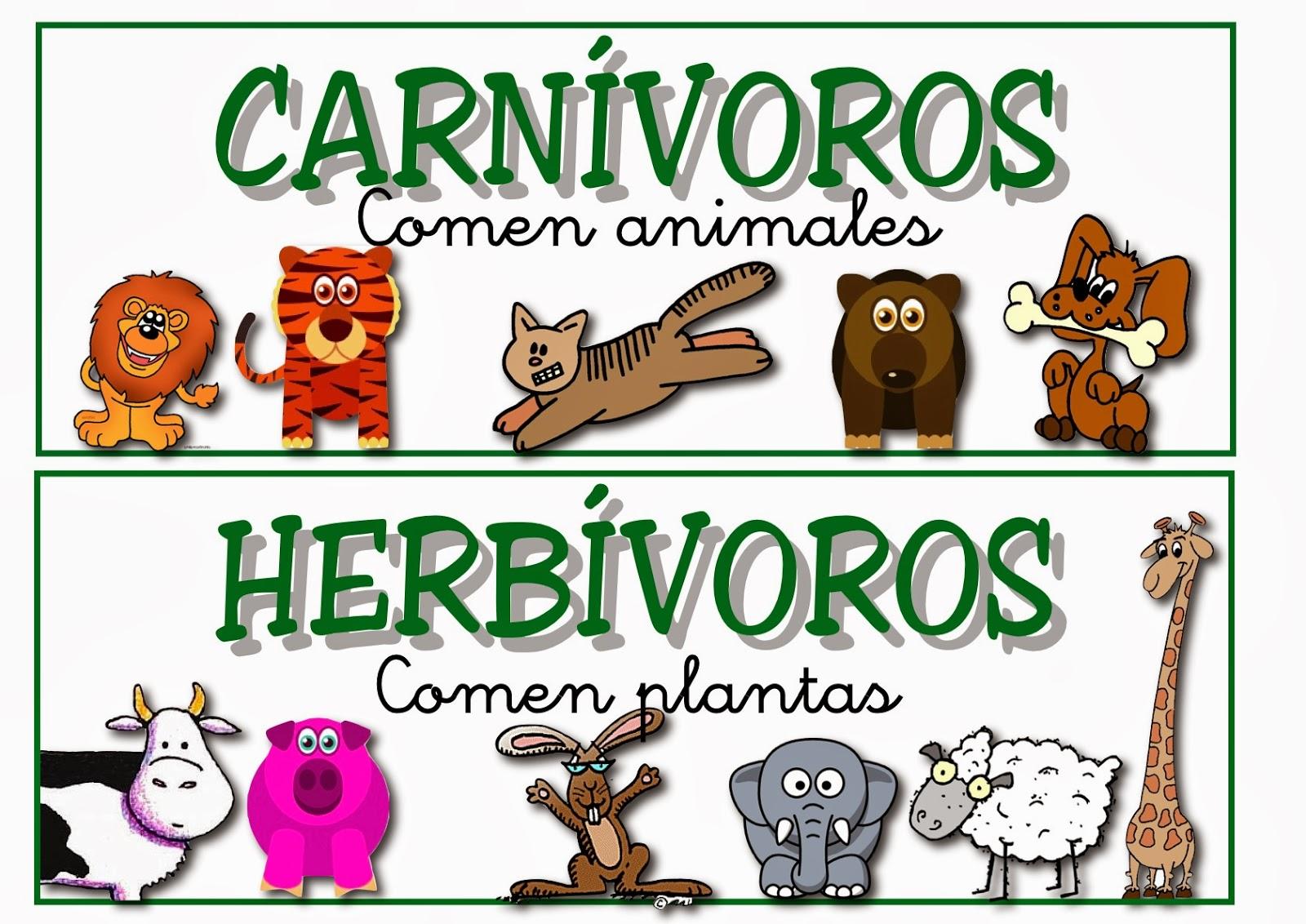 Animales Omnivoros Dibujos Para Colorear: El Blog De Primero: Animales Herbívoros, Carnívoros Y