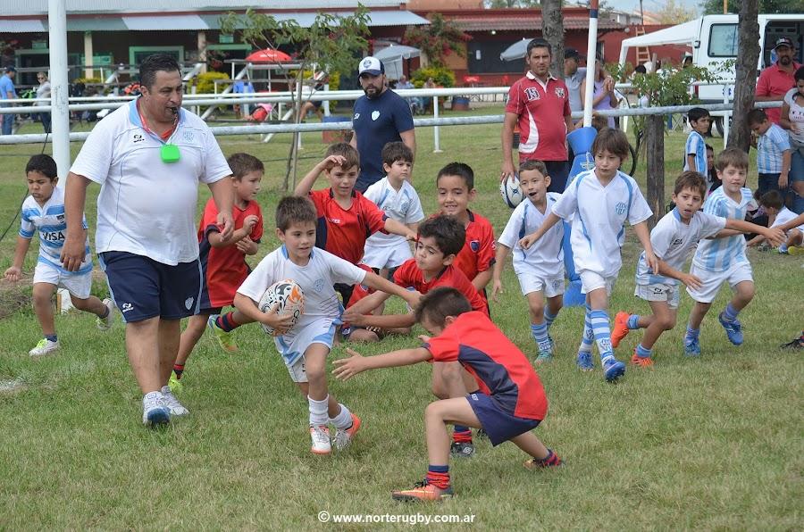 Tucumán será epicentro del rugby infantil regional