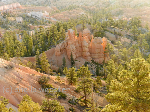 hoodoos appear to be lit up in the sunrise sunshine