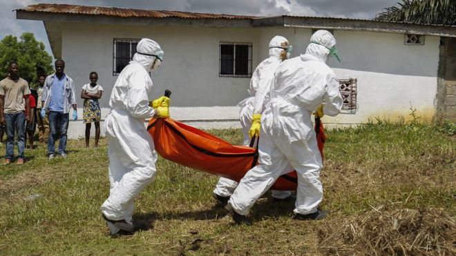 Red Cross apologise for losing $5m of Ebola funds to fraud
